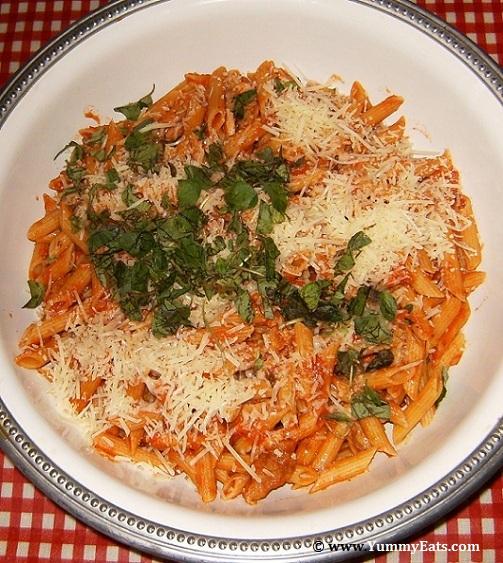 Penne pasta dish with Marinara Sauce, Romano Cheese and fresh Oregano.